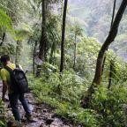 Gunung Salak: Perjalanan yang Tak Sampai