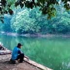 Menemukan Hutan Sungguhan di Tengah Belantara Beton Ibukota