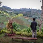 Menyambangi Kebun Tanaman Herbal di Bandung Utara